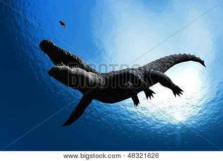 Crocodile under water.