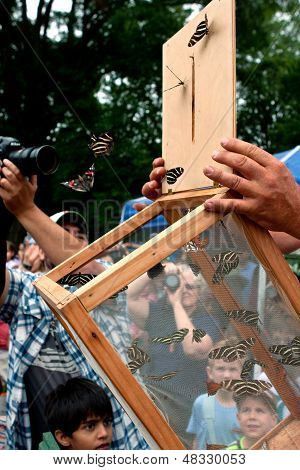 Los espectadores ver la liberación de mariposas en el Festival de verano