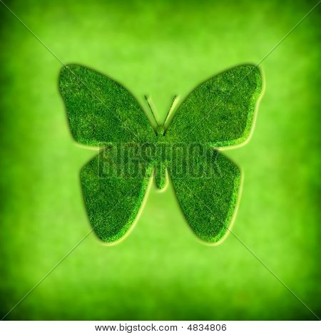 Spring Background With Butterfly Illustration