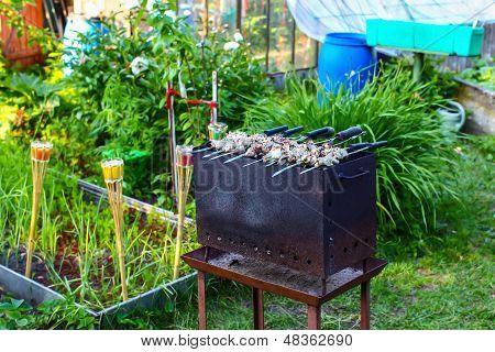 Pork Meat (shashlik) On Grill In A Smoke In Garden