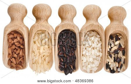 Different rice in a wooden scoops Isolated on White Background