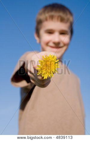 Boy Holding A Dandelion With Big Smile