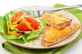 Delicious tuna melt with cheese and small garden salad overhead perspective poster