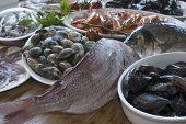 mediterranean diet: fresh bluefish: healthy raw fish mixed poster