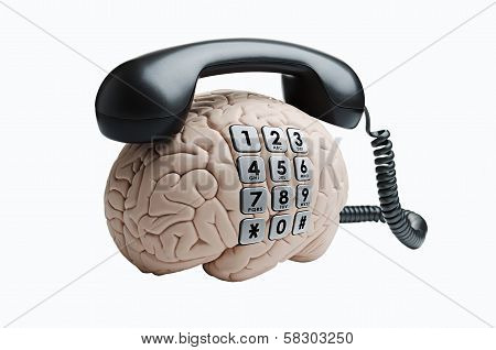 Brain with phone