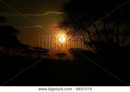 sunset at serengeti