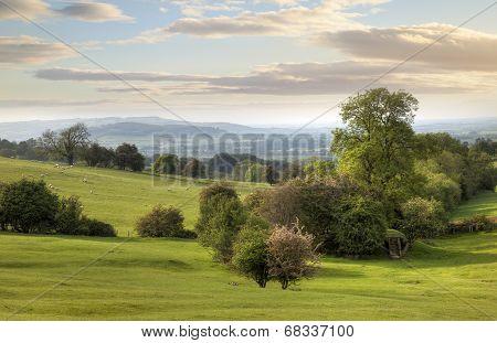 Cotswolds Landscape in Spring