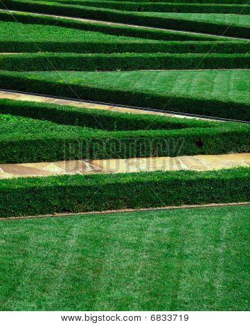 Zig-zag Landscaped Lawn
