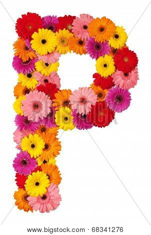 Letter P - Flower Alphabet Isolated On White