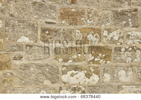 Traditional Lime Mortar Pointing.