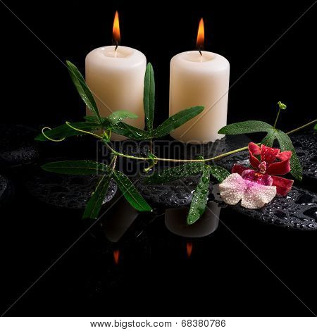 Beautiful Spa Concept Of White And Red Orchid (cambria), Green Tendril, Candles On Zen Stones With D