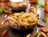 indian chicken curry in balti dish poster
