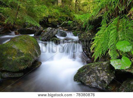 Mountain creek waterfall