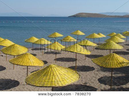 sun umbrellas