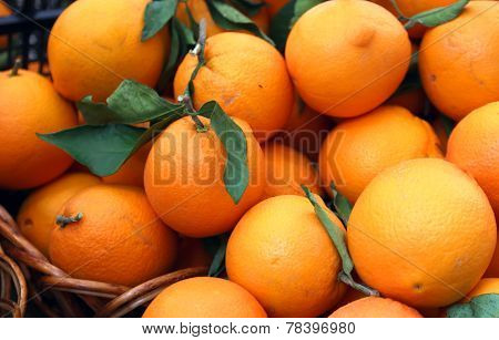 Southern juicy oranges full of vitamin C for sale at the market poster
