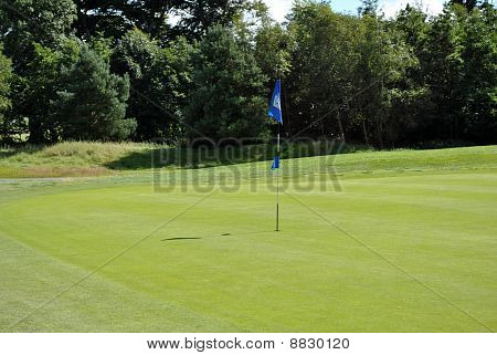 flag on a green