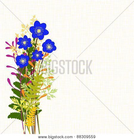 Springtime Blue Hepatica Nobilis With Wild Grass Background