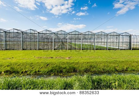 Modern And Transparent Greenhouse On The Outside