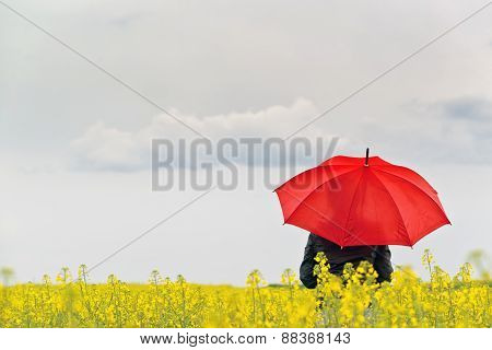 Person With Red Umbrella Standing In Oilseed Rapseed Agricultura
