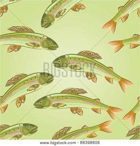 Seamless Texture Grayling, Salmon-predatory Fish Vector