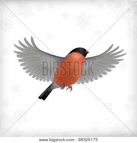 Winter Christmas Flying Bird Bullfinch