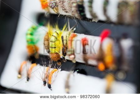 Different Fly Fishing Bugs In Box