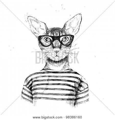 Hand drawn dressed up hipster cat