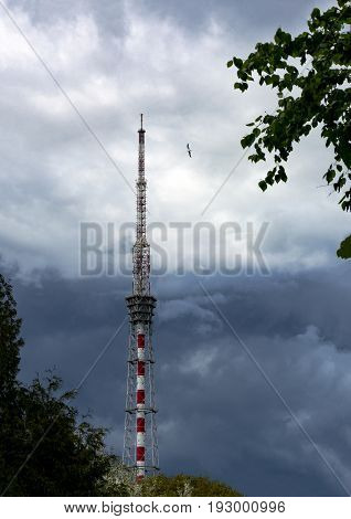 TV and radio tower metal trees bird sky with rain clouds