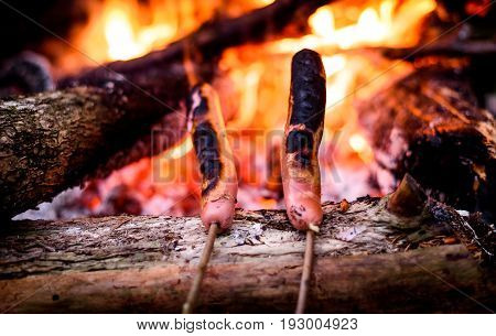 Making And Cooking Hot Dog Sausages Over Open Camp Fire.