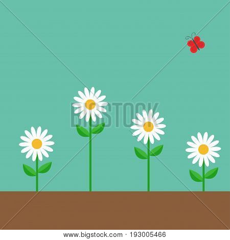 Red butterfly. White daisy chamomile set. Cute growing on ground flower plant. Love card. Camomile icon. Flat design. Green background. Isolated. Vector illustration