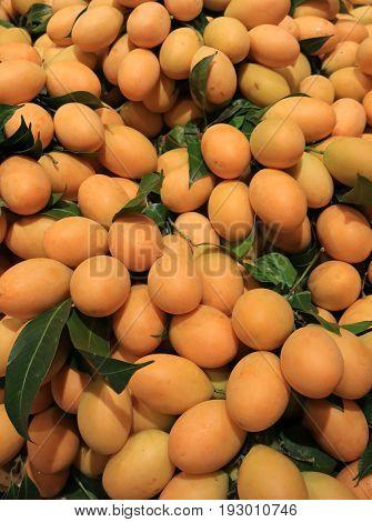 Pile of pastel orange yellow color fresh ripe Marian Plum or Ma-Prang fruits, Thailand