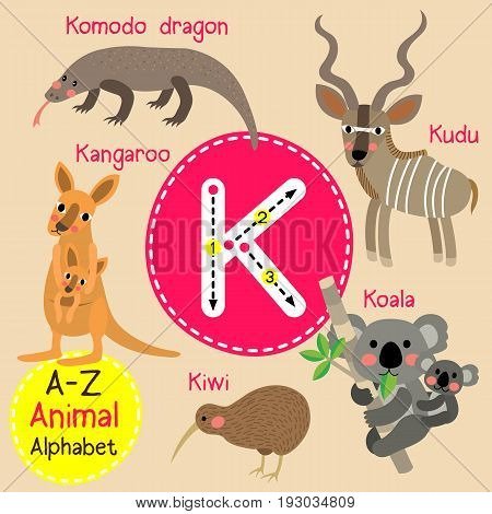 Cute children zoo alphabet K letter tracing of funny animal cartoon for kids learning English vocabulary vector illustration.