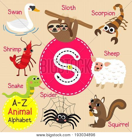 Cute children zoo alphabet S letter tracing of funny animal cartoon for kids learning English vocabulary vector illustration.
