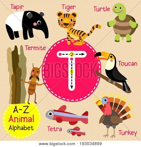 Cute children zoo alphabet T letter tracing of funny animal cartoon for kids learning English vocabulary vector illustration.