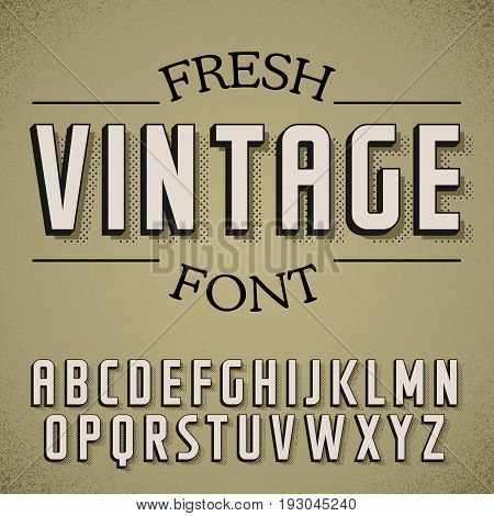 Fresh Vintage Font Poster on dusty noise background vector illustration