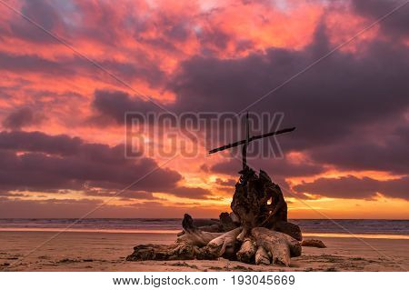 Old wash up tree stump with a cross on a beach at sunset.