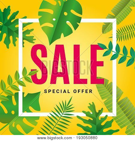 Tropical summer Sale background. Sale banner, poster, logo, web, certificate, gift voucher. Beautiful Palm leaves, jungle leaf. Tropical summer background