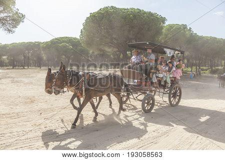 El Rocio Spain - June 1 2017: Pilgrims in a horse-drawn carriage on the road to El Rocio during the Romeria 2017. Province of Huelva Almonte Andalusia Spain