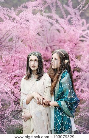 fairy tale girls. Portrait of mystic elven sisters. Cosplay character. Drawing mehendi