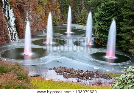 Victoria BC,Canada,December 11th 2013.The spouting fountain at the Butchart Gardens in Victoria BC.