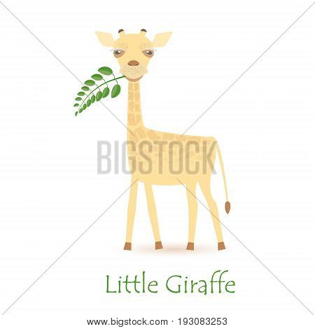 Cute Giraffe Calf Isolated on White with the Caption. Made in Flat Style. Vector EPS 10