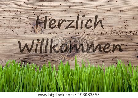 German Text Herzlich Willkommen Means Welcome. Spring Season Greeting Card. Bright Aged Wooden Background With Gras.