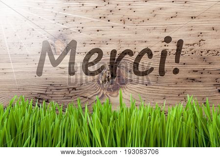 French Text Merci Means Thank You. Spring Season Greeting Card. Bright, Sunny And Aged Wooden Background With Gras.