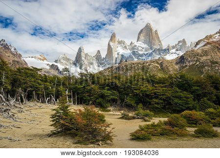 Mt. Fitz Roy With Green Trees