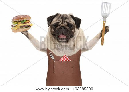 smiling pug dog wearing leather barbecue apron holding up hamburger and spatula isolated on white background
