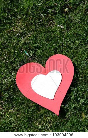 heart papper in the grass