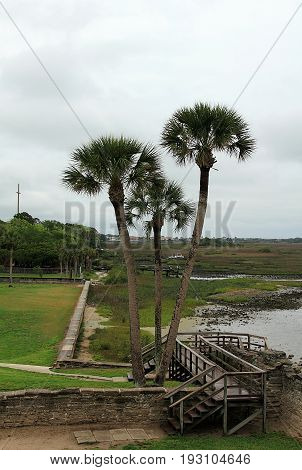 View of Matanzas Bay and palm trees from the fort in Saint Augustine Florida