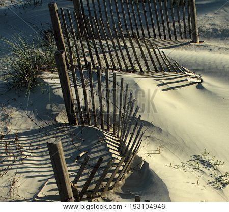 The shadow thrown by a fence on the beach. Jacksonville, Florida