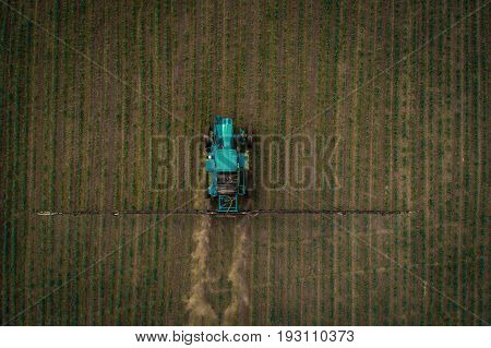 A blue tractor moves through the spring field and sprays fertilizers on plants planted on it. Spring processing of agricultural crops. View from above. Aerial view