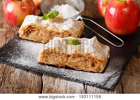 Delicious Slice Of Apple Strudel With Powdered Sugar And Mint Closeup. Horizontal